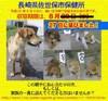 Nagasaki_sasebo08080427_2